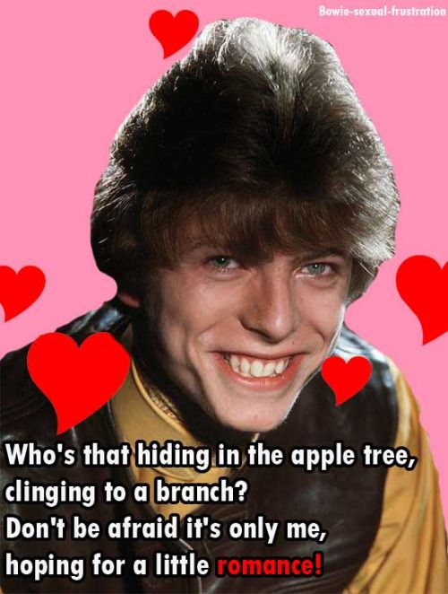 bowie valentines day lyric