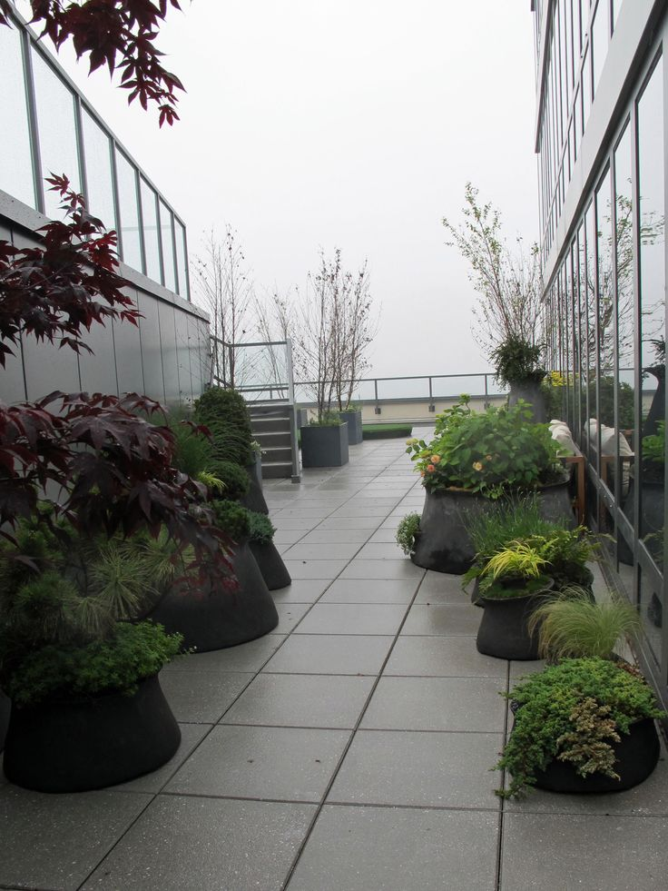 68 Best Balcony Roof Garden Spaces Images On Pinterest