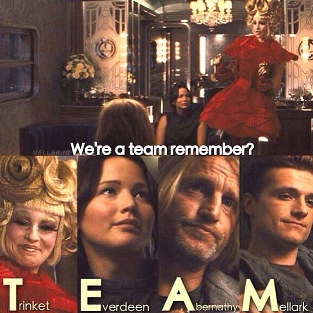 We're a team... i'm gonna miss these guys when mockingjay part 2 comes out...i'm crying now