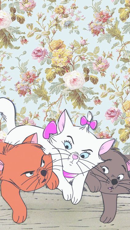 disney, wallpaper, and cat image