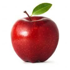 Image result for apple