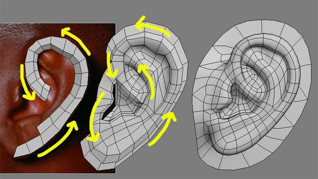 reference topology head - Recherche Google