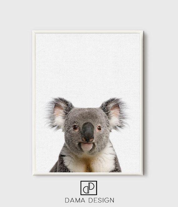 Koala Print Koala printable Animal Portrait Nursery Animal