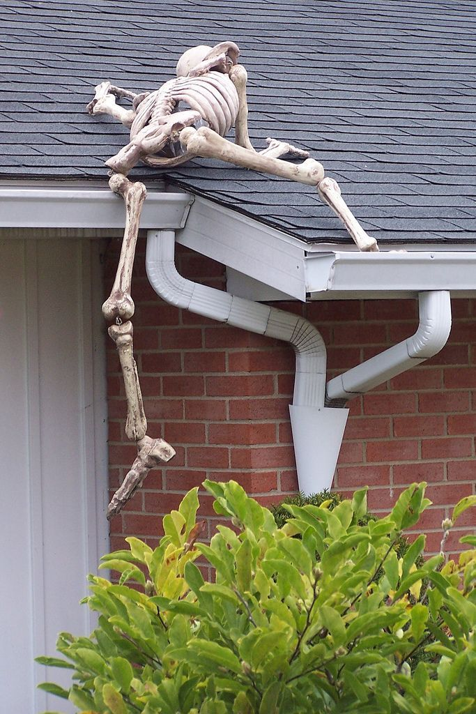 Halloween Decor: Skeletons. P2 has been wanting to do this ...