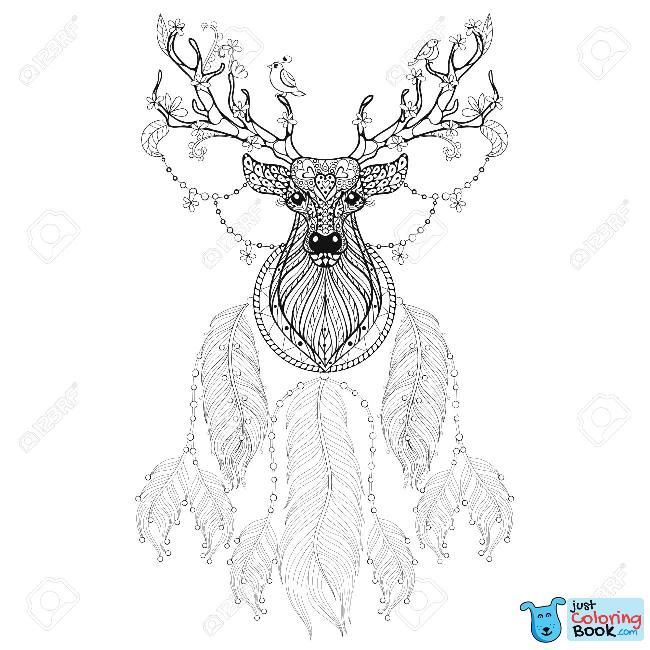Deer Illustration Coloring Pages