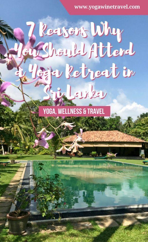 Yogawinetravel.com: 7 Reasons Why You Should Attend a Yoga Retreat in Sri Lanka