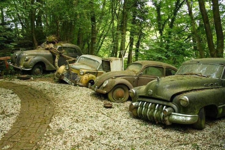 Se és amante de carros e de motores, ao veres isto vais ficar triste, impressionado e até chocado! Ao ver estas imagens, ficamos com a sensação de que são carros abandonados, que se encontram perdidos no meio de uma floresta...