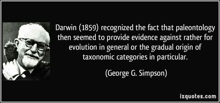 evolution vs creationism disproving the theory Disproving evolution - natural selection fails test  such as a mammal evolving into a reptile or vs versa     not natural selection the theory of evolution is.