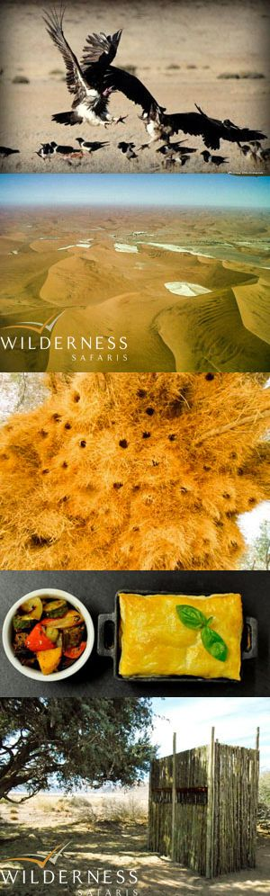 We Are Wilderness - Some highlights of the month.Click here for more.