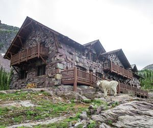 Glacier National Park Sperry Chalet