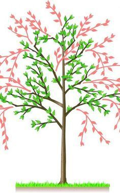 die besten 17 ideen zu baum schneiden auf pinterest obstbaumschnitt buchsbaum schneiden und. Black Bedroom Furniture Sets. Home Design Ideas