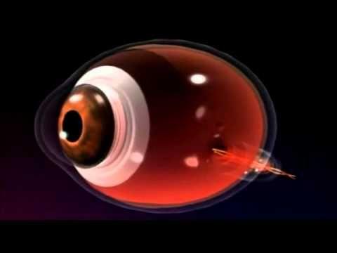 Descubre el universo:  El cosmos invisible La luz fantástica documental