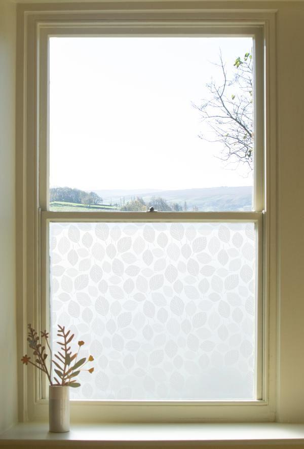 Beech Leaves Window Film                      – Hannah Nunn         #glass #decor #patterned #windowfilm #frosted
