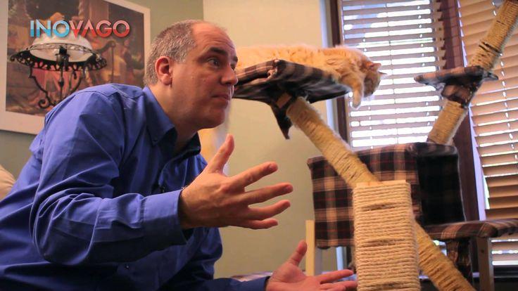 Comment empecher un chat de faire ses griffes destruction chat - Les gri...