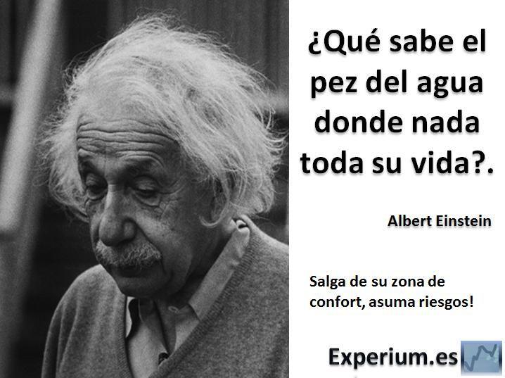 Frase De Vida Reflexiones: Frases De Albert Einstein.