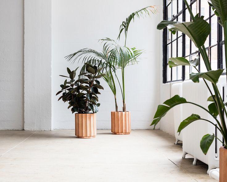 30 Best Oversized Planters Images On Pinterest
