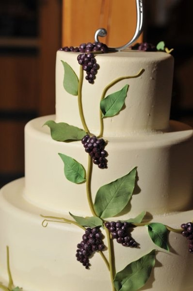 Vineyardesque cake- maybe substitute grape clusters for paisley shapes in some of other designs