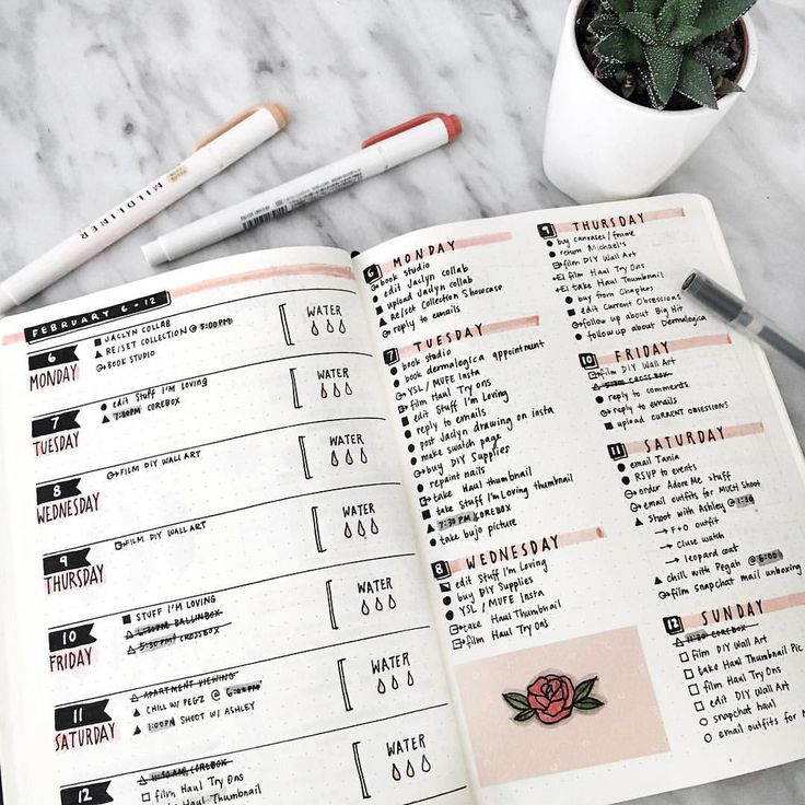 "658 mentions J'aime, 16 commentaires - Amanda Lee (@amandarachdoodles) sur Instagram : ""another week another spread 🌹"""