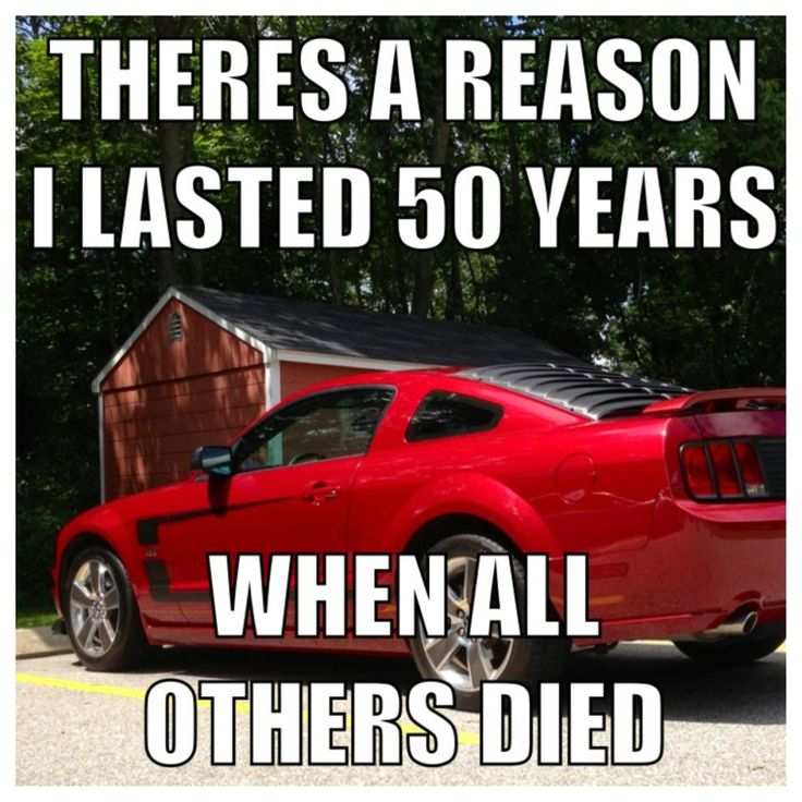 Exactly. The first, the original muscle car. Often imitated but NEVER EVER duplicated. Mustang L❤️VE.