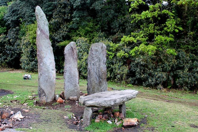 Sacred Grove | Mawphlang | East Khasi Hills | Meghalaya : Outlook Traveller