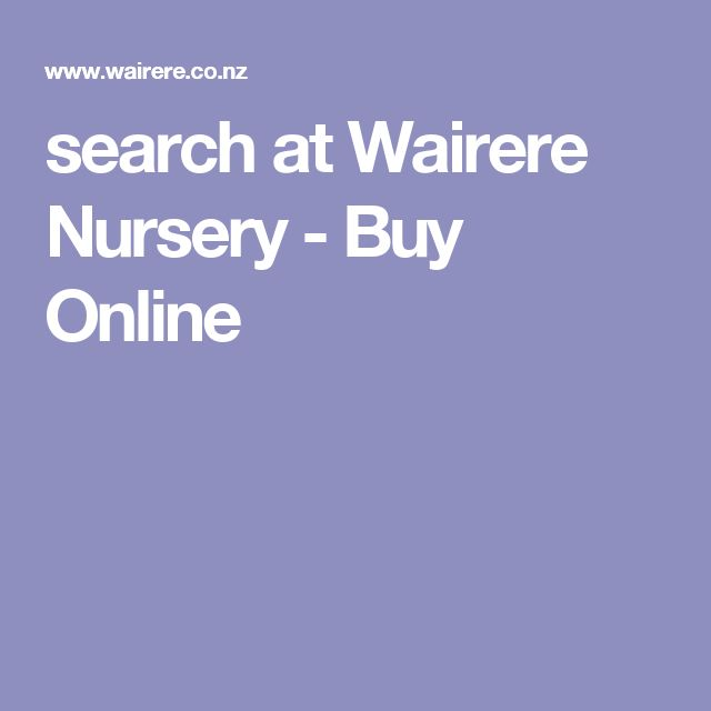 search at Wairere Nursery - Buy Online