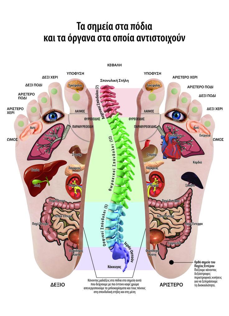 Απαλλαγείτε από τα προβλήματα στην σπονδυλική στη στήλη, σκολίωση, καμπούρα, από τους πόνους, και τις κήλες στη μέση.