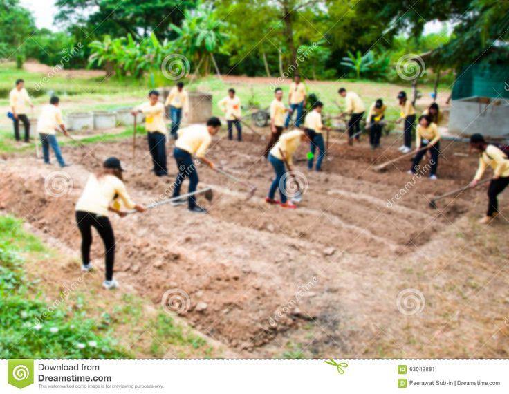 kopać ziemię - Google Search