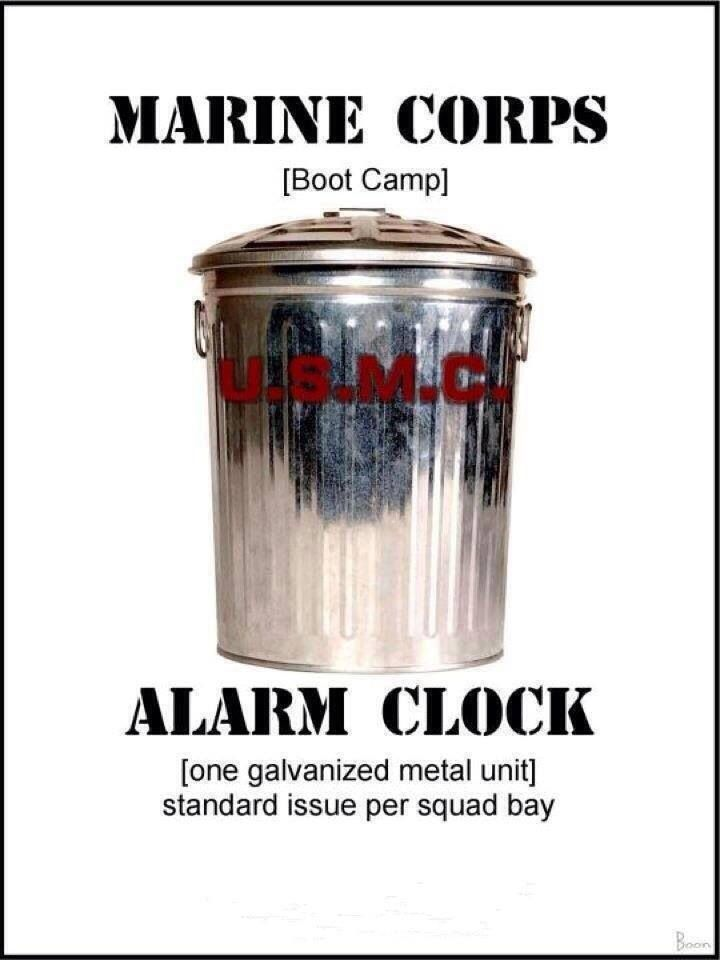 July, 1971 - MCRD Parris Island: That first wake up after being picked up by platoon drill instructors - all 4 of them down the middle of the squad bay screaming and beating on metal trash cans.......