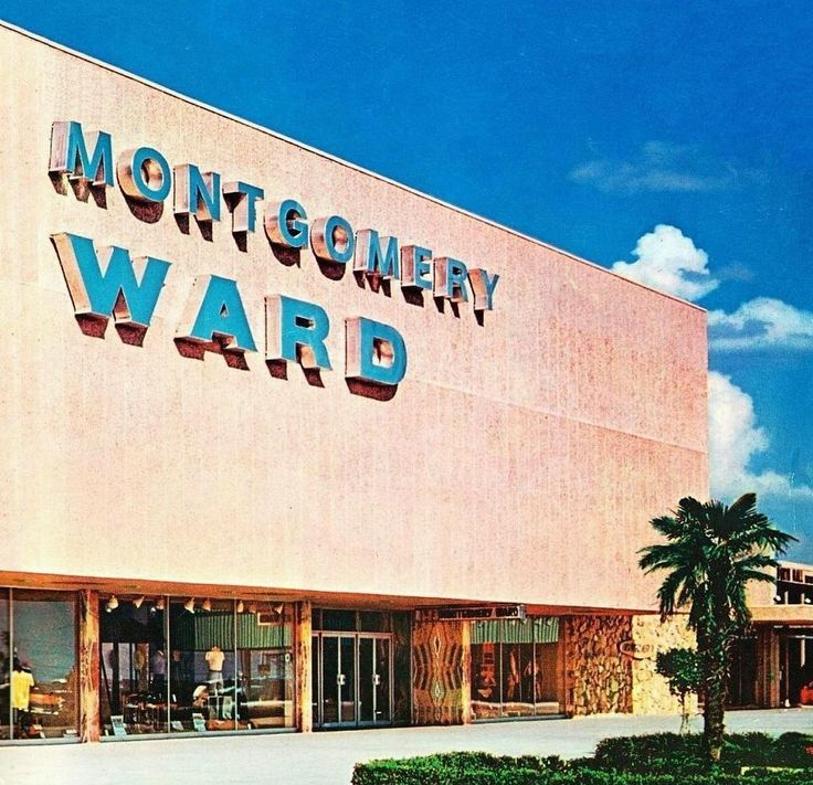 Montgomery Ward - I shopped here with my mom. Got my first microwave oven back in '82 from here. They are still around but I think they only do mail order, as I received a catalog from them not too long ago!