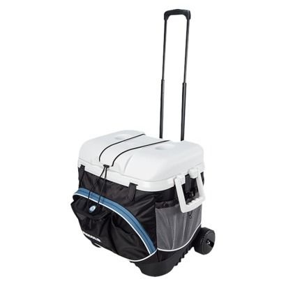 Kim Suburban: Travel Baseball: What to pack in your cooler...tips & ideas