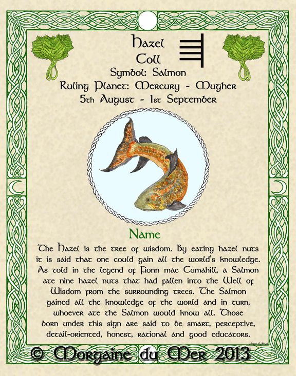 CELTIC ZODIAC SIGNS HOROSCOPE AND PREDICTIONS FOR THE YEAR 2020