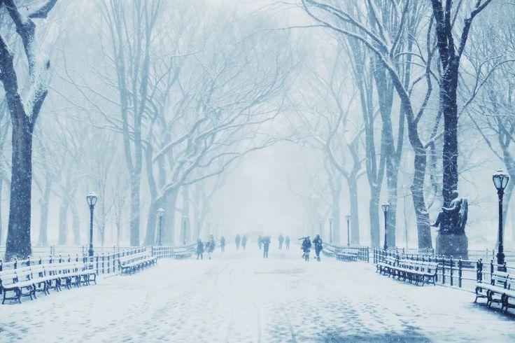 Poets way in Central Park
