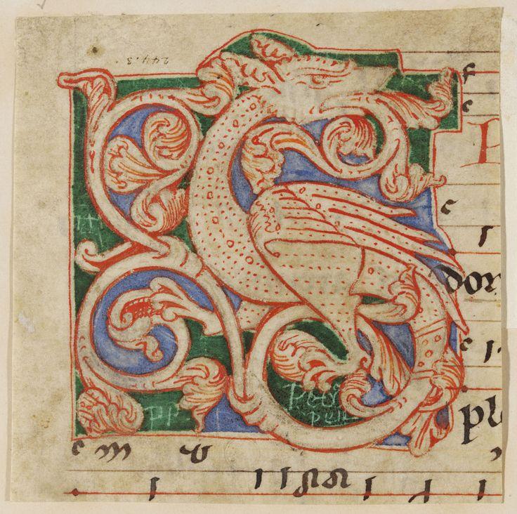 859365820c6a4f15b71a3ba086c9649e--illuminated-letters-illuminated-manuscript.jpg