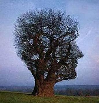 Bahaya mengosongkan pikiran tidak baik untuk kesehatan mental anda