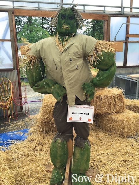 33 Cool Scarecrow Ideas -                                                                                                                                                                                 More