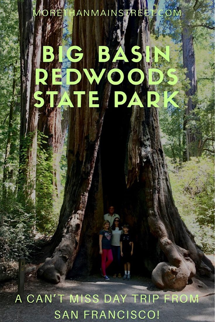Add Big Basin Redwoods State Park to your California road trip!! The perfect easy hike for all ages to see the giant redwoods! US Travel #redwoods #familytravel #california #roadtrip