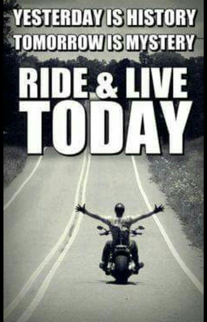 Harley Davidson Quotes 213 Best Leather Up Images On Pinterest  Motorcycle Girls