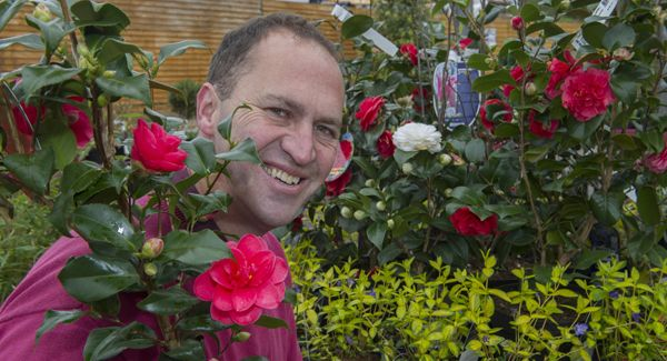 VIDEO When planting, work with nature as opposed to against it | Irish Examiner