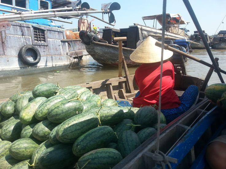 Op de Mekong Delta zijn lokale mensen hard aan het werk. Zij verkopen hun oogst op zowel de gewone markt als de drijvende markt. De Vietnamese vrouw is midden in de nacht opgestaan, om zo de watermeloenen te verkopen vanaf 3 uur 's nachts.