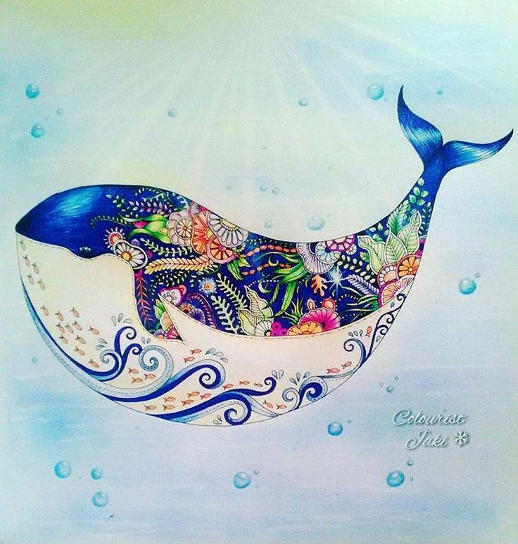 431 Best JB Lost Ocean Images On Pinterest