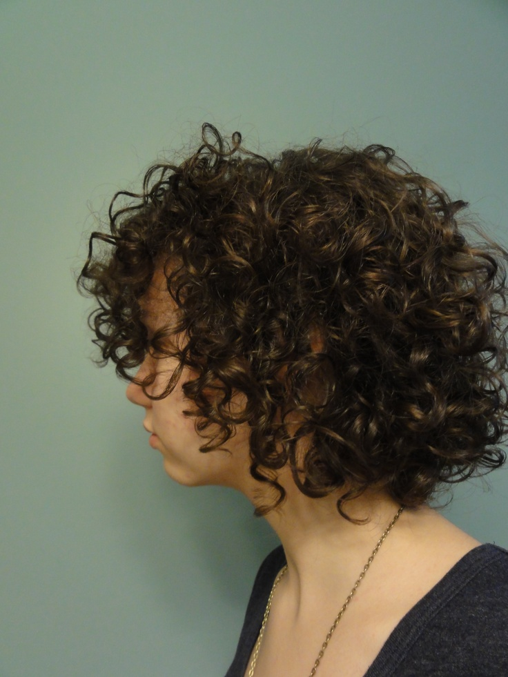 """Short, Curly Hair: I'm going to start making this board about """"How to Fall in Love with Your Curls""""  It's basically going to be tips and styles for mainly short, curly haired people like me. If you can, try to spread the word…I remember how terrible I felt when I couldn't find ANY nice updos for my hair or ANY tips on how to maintain it.  I just want to help out my fellow curlies"""