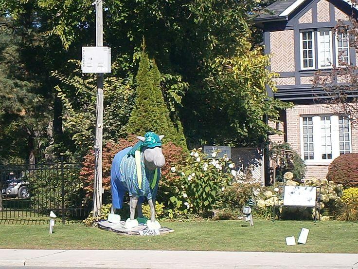 Some of those moose are still hanging around the city of Toronto! http://babybirdguide.com/guide-to-toronto/