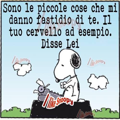 Snoopy: Maniera molto elegante di dare dell'idiota...............Very elegant way to give some idiot..........