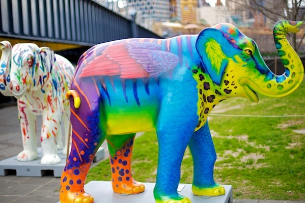 Life-sized sculptures of Mali, Melbourne Zoo's not so baby elephant can be found scattered around the city.