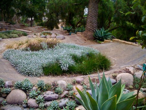 A manicured back yard pump-track even your wife will like.