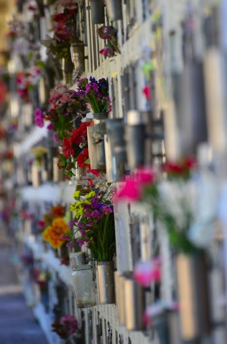 Cementerio de Godoy Cruz  Mendoza, Argentina