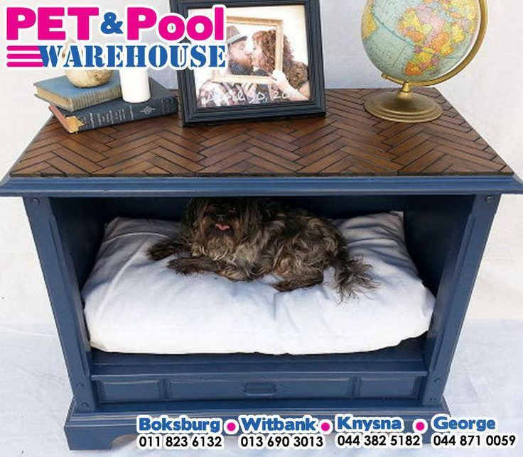 Ever wondered what to do with that old TV cabinet or vintage dresser? Well, wonder no more! Make it a trendy pad for your pooch. #PetPoolWarehouse #DIY #ilovemydogs