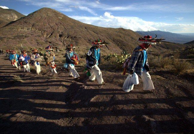 Peyote Guardians: The Huichol Struggle of Life and Spirit