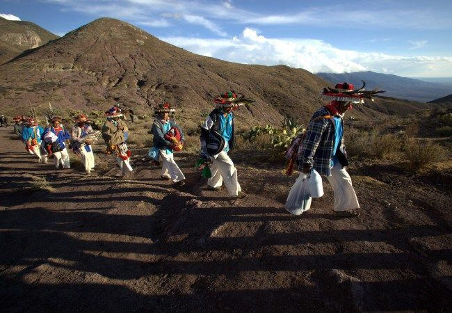 Peyote Guardians: The Huichol Struggle of Life and Spirit