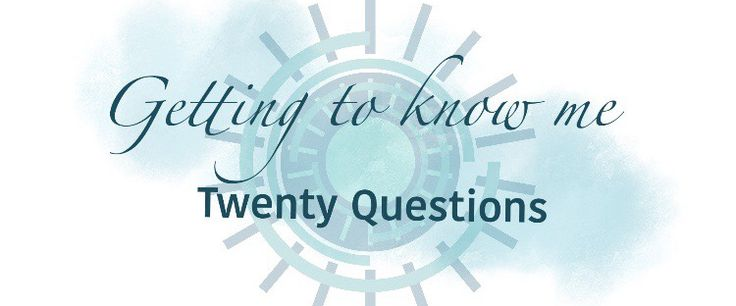 Getting To Know Me – Twenty Questions – Wheelescapades